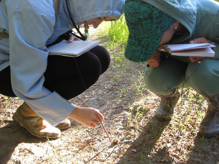 биологи на практике. леонова